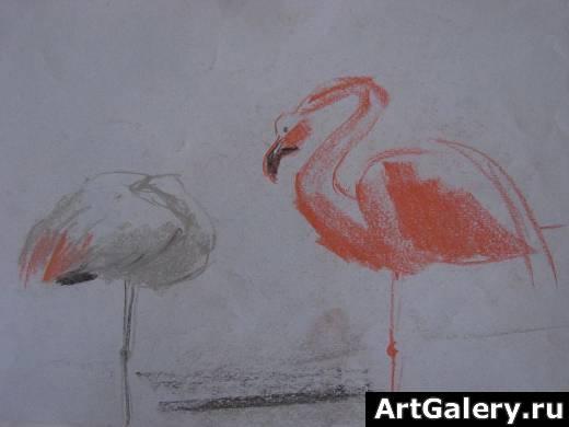 Фламинго графика рисунок